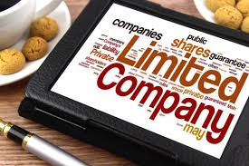 What is a limited liability business ?